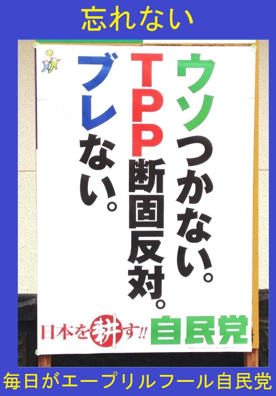 Mainichigaepuriruhuru_2